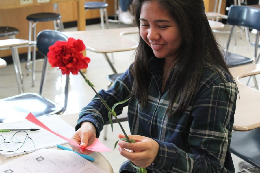 Students at West Campus celebrated Valentines Day on February 14 in a variety of ways—from giving carnations through Key Club, buying orange Crush from LASO, or just dressing up for the occasion.