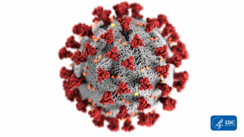 This illustration, created at the Centers for Disease Control and Prevention (CDC), reveals ultrastructural morphology exhibited by coronaviruses. The illness caused by this virus has been named coronavirus disease 2019 (COVID-19).