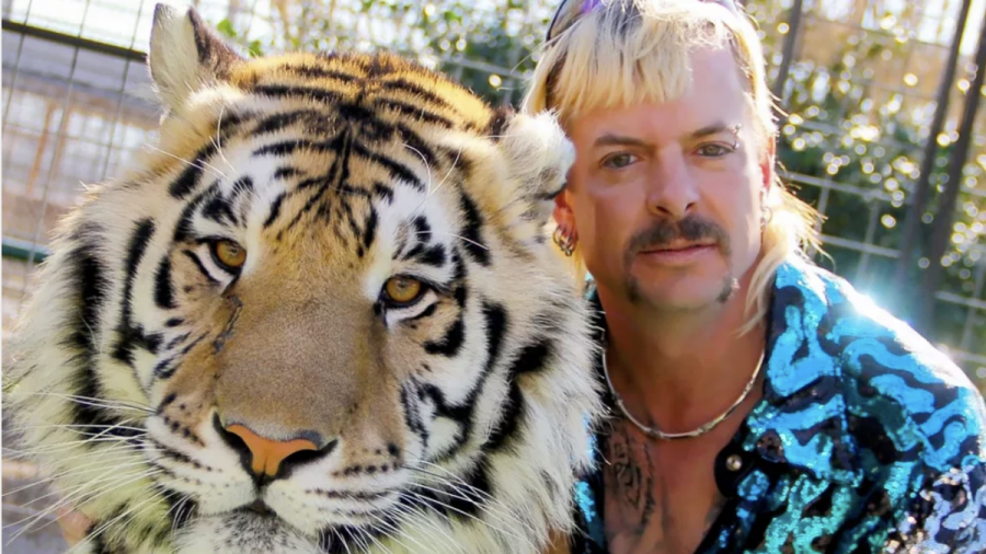 The eccentric Joe Exotic is certainly a character worthy of his own documentary series. But does the series reveal him to be a hero or a villain?