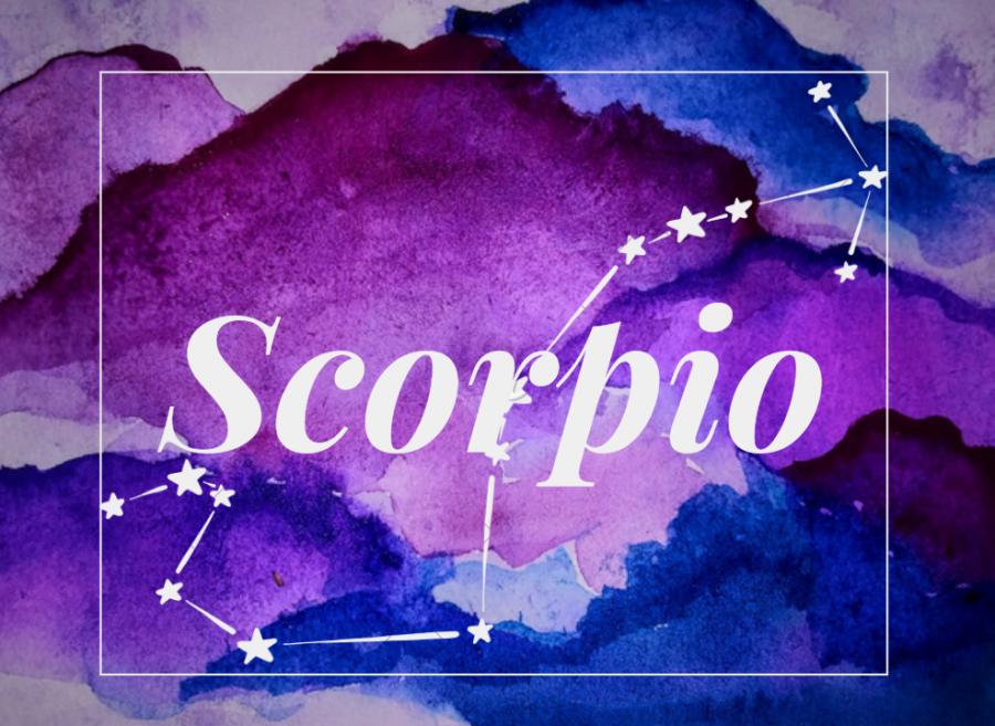 8Scorpio