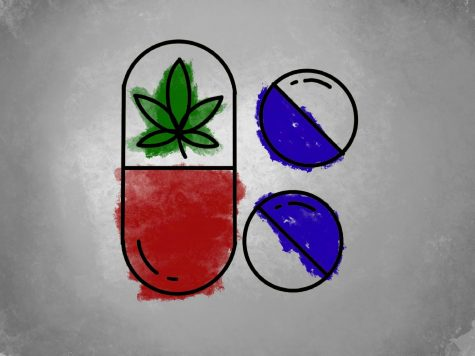 Now that marijuana is legalized in the state of Illinois, some adolescents have more casual exposure to the drug, and many wonder if the benefits their adult family some enjoy could also apply to them.